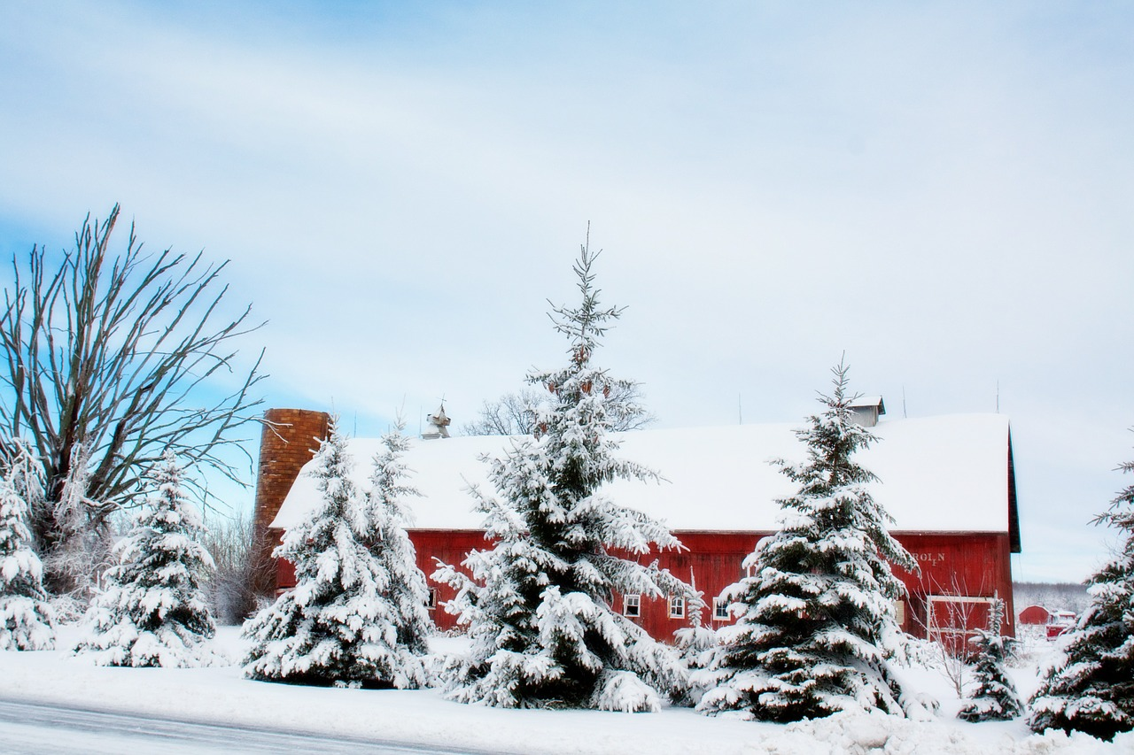 Five Ways to Prepare Your Barn For Winter